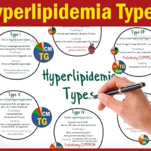 What is Hyperlipidemia